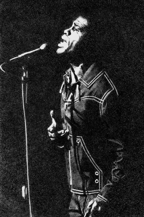 James Brown by Petrol